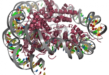 nucleosome_article
