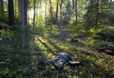 died-in-jungle