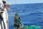 Plastic patch in Pacific Ocean growing rapidly, study shows